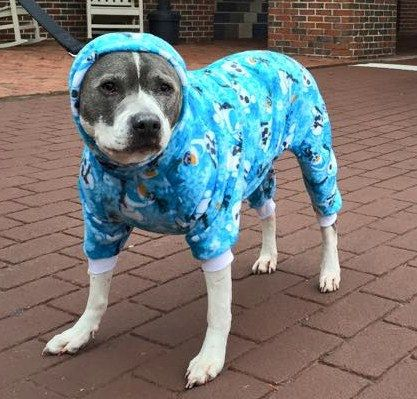 Dog pajama NEW multi sized for small thru xl dogs *digital* download ...