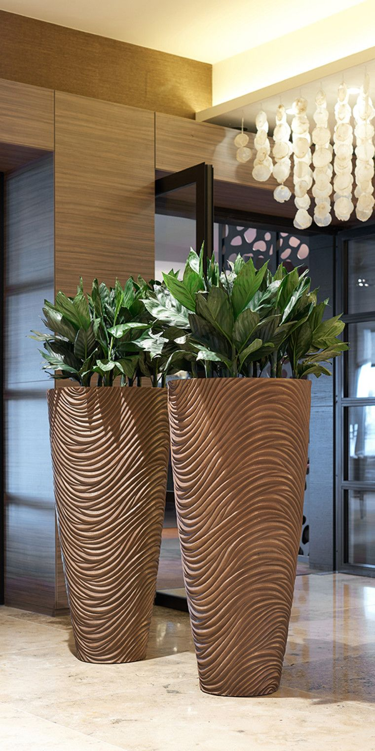 raumbegruenung innenraumbegruenung baumhaus pflanzenpflege