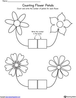 Count Flower Petals Worksheet