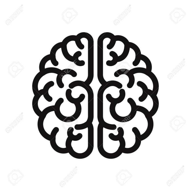 16 Brain Vector Icon Brain Vector Vector Icons Free Vector Icons