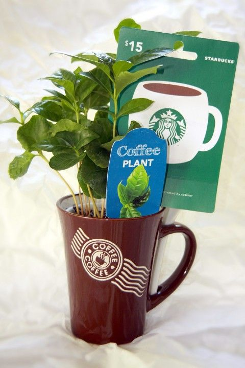 Creative ways to present gift cards- This would be perfect for a Starbucks card