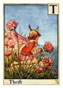 Thrift Flower Fairy » Flower Fairy Prints - Cicely Mary Barker Flower Fairies