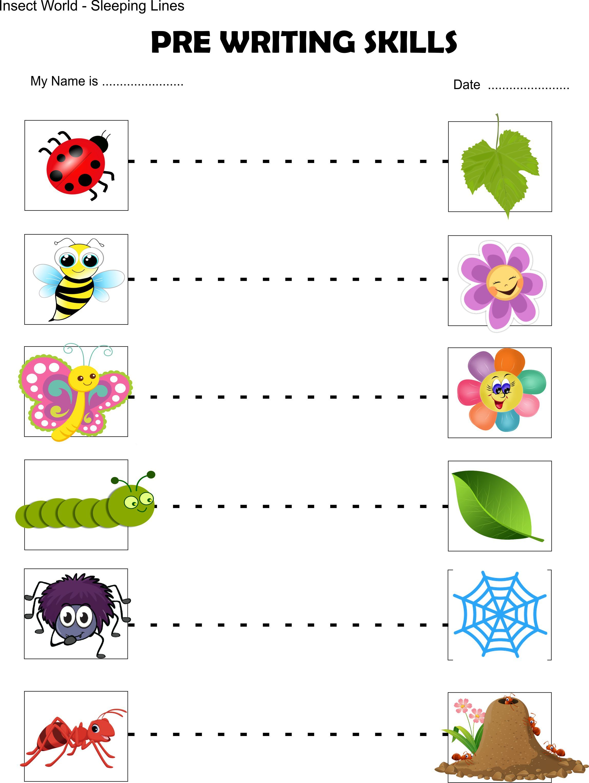 Insect Toddler Worksheet Beginner Sleeping Lines