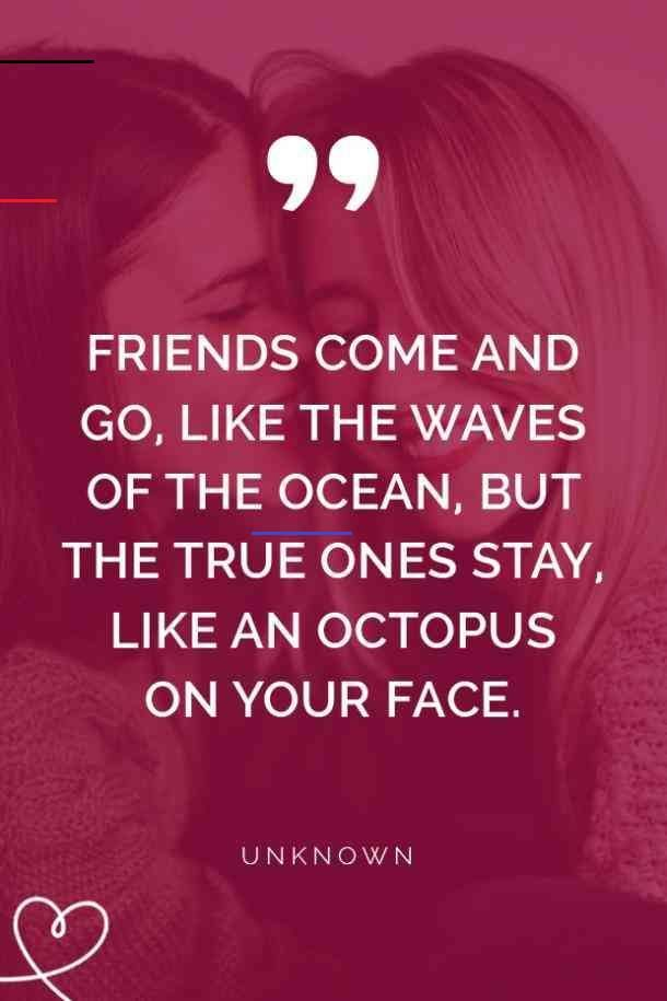 40 Short, Cute Quotes About Best Friends To Help You Remember All The Good Times 40 Short, Cute Quotes About Best Friends To Help You Remember All The Good Times Laughing with your best friend is like nothing else. Share some of your craziest moments together with these short, cute best friend quotes that will cheer you up and help you remember all the good times and great #memories you have together. #quotes #bestfriends<br> Best friends are the goofiest and craziest, but they will do anything