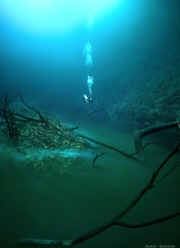 Underwater River Flows Through Cenote Along Mexico S Ocean