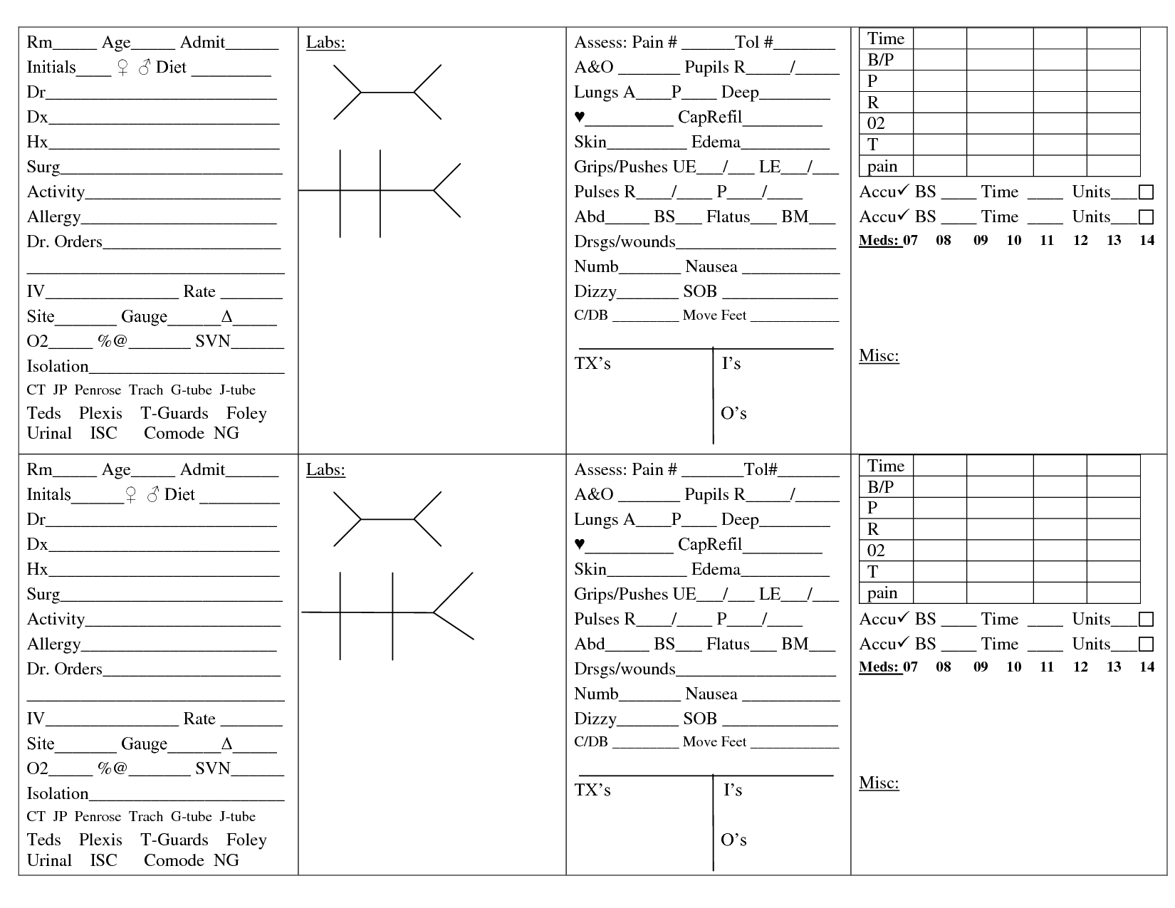 Brain sheets for new nurses scope of work template for Nursing templates for documentation