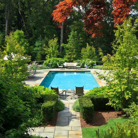 Pool Patio Traditional Landscape Boston By The Schumacher Companies Landscaping Around Pool Traditional Landscape Backyard Pool Landscaping