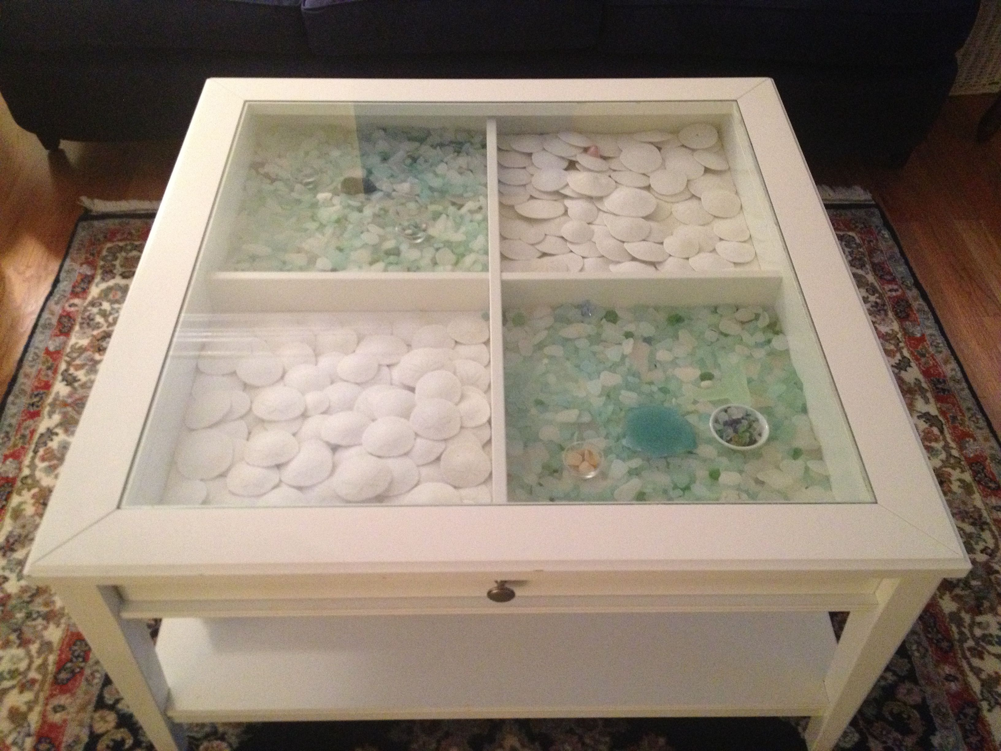 Sea glass & sand dollars displayed in a glass top coffee table