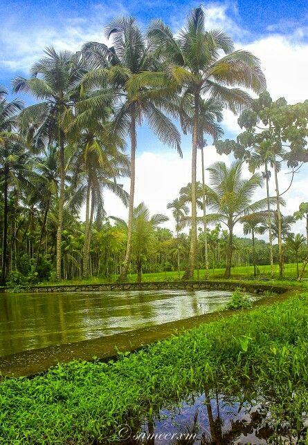 Kerala Nature Kerala Beautiful Landscape Photography Beautiful Nature