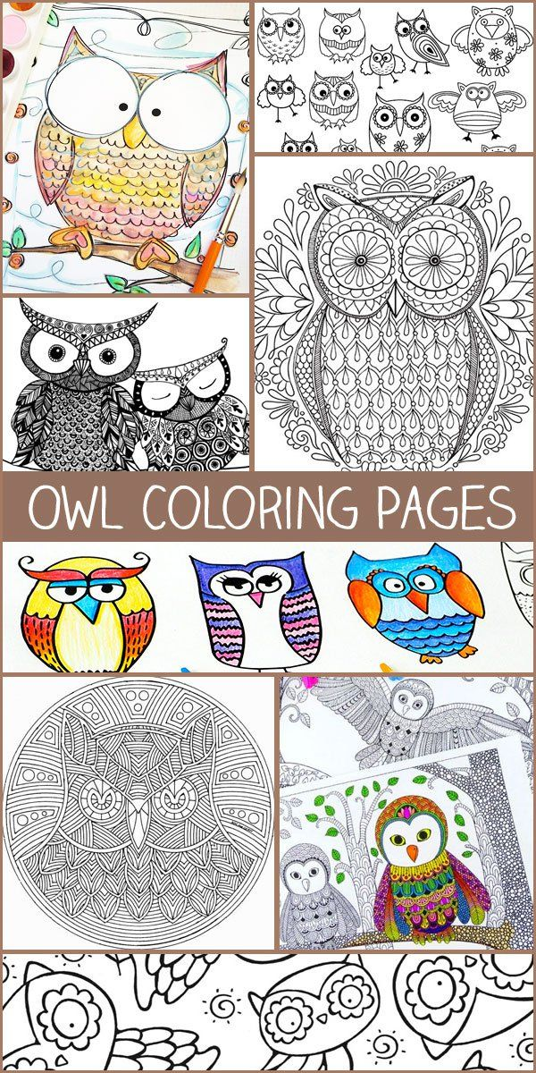 Owl Coloring Pages | Craft | Free Printables | Owl coloring ...