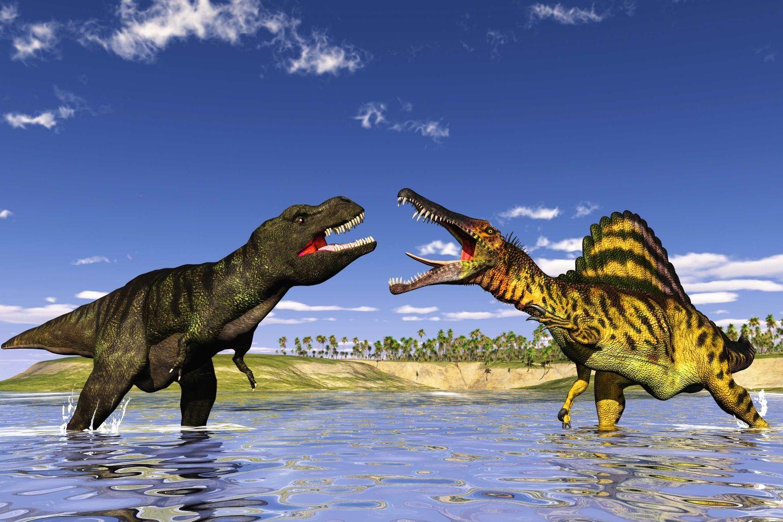Spinosaurus Coloring Page Spinosaurus Coloring Pages Lion