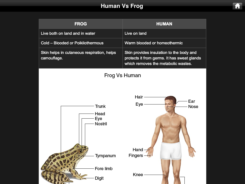 Frog Dissection A Must Have Virtual Biology App