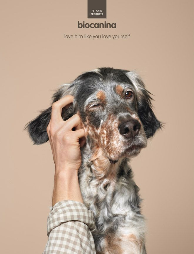 Pet Care Creative Animal Advertising Biocanina Pet Advertising