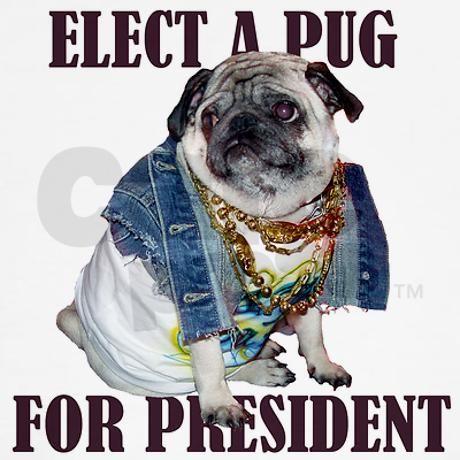Fawn Pug For President Apparel Kids Light T Shirt Pug For