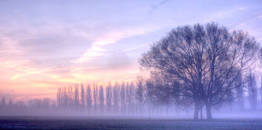 Mist and Ice III by Keith Britton on 500px