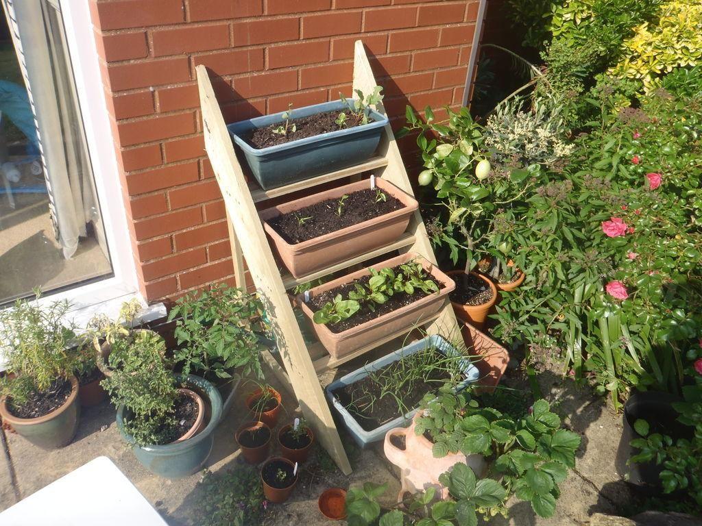 DIY Simple Planter Ladder - DIY Garden