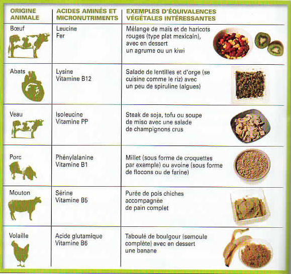 Greg coach fitness rennes blog archive tableau d quivalence prot ine animale v g tale - Tableau equivalence cuisine ...