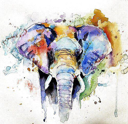 Resultat De Recherche D Images Pour Elephant Aquarelle Seni