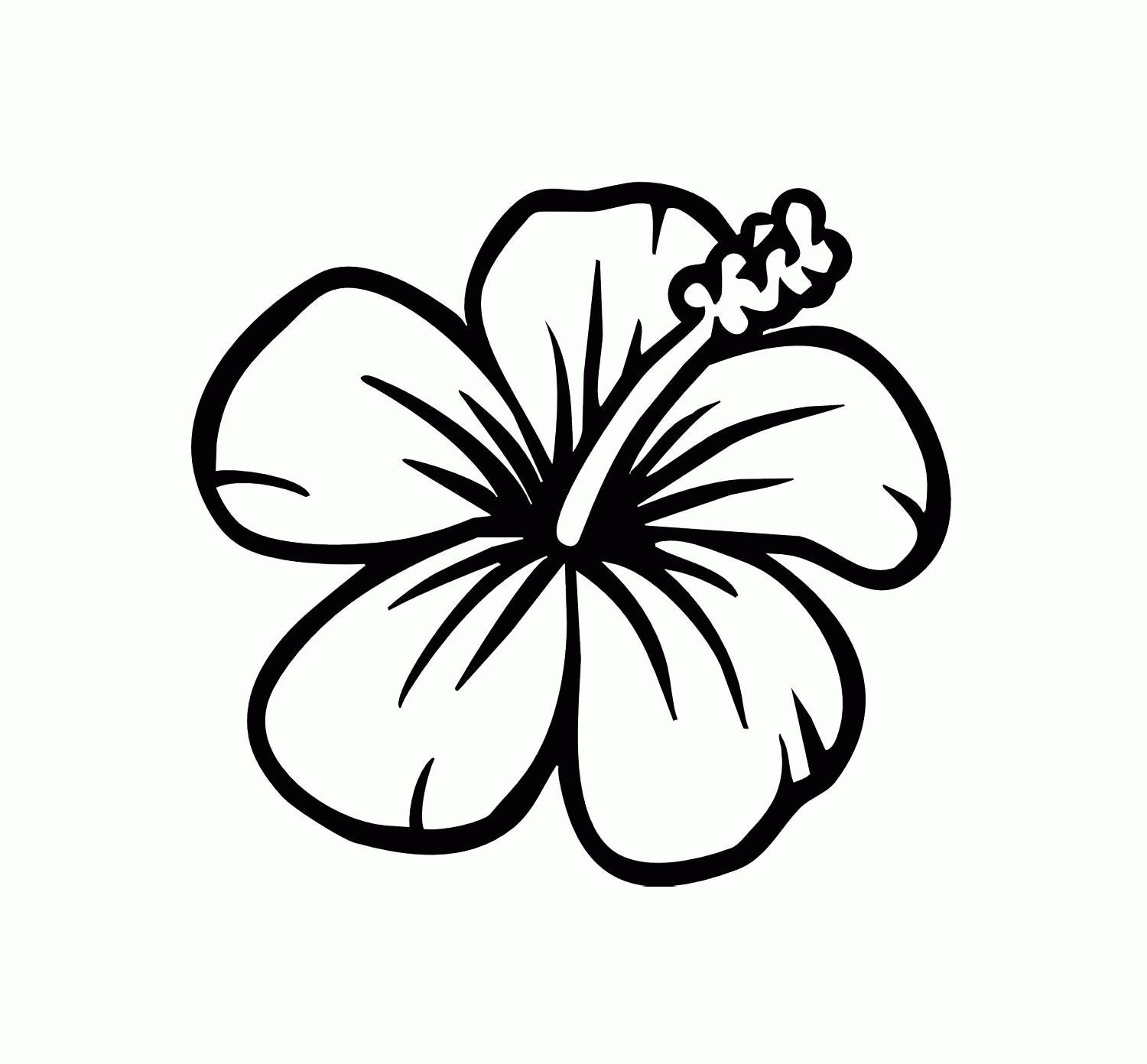 21 Brilliant Picture Of Flowers Coloring Pages Entitlementtrap Com Hibiscus Flower Drawing Printable Flower Coloring Pages Flower Coloring Pages