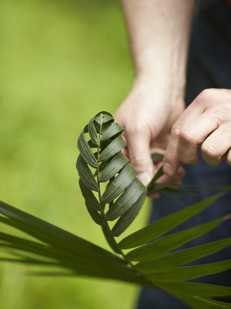 Foliage Arthand Weaving Palm Leaves Floral Art Pinterest