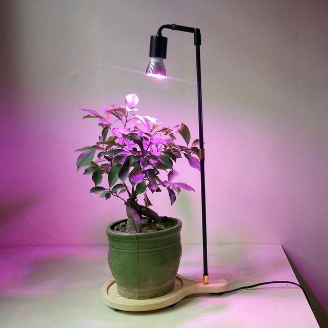 Full Spectrum Led Grow Lights Amazon 400 x 300