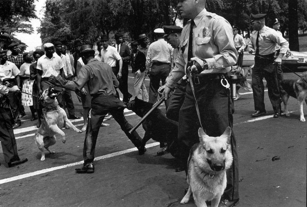 Police Dogs Attack Demonstrators Birmingham Protests May 1963