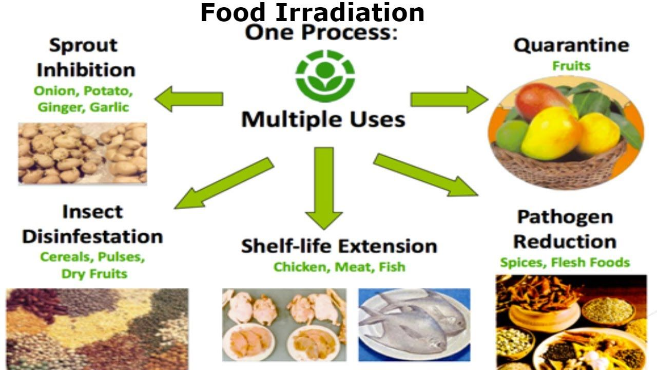 Food irradiation using nuclear radiation to food production food irradiation using nuclear radiation to food production processing biocorpaavc