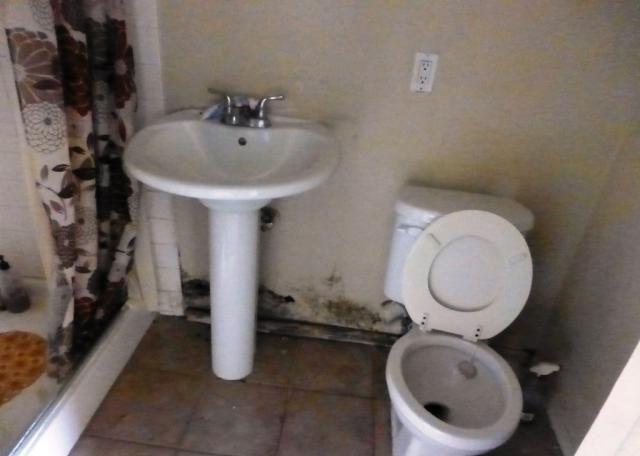 Molds In Bathroom Dangerous Mold In Bathroom Bathroom Flooring Bathroom