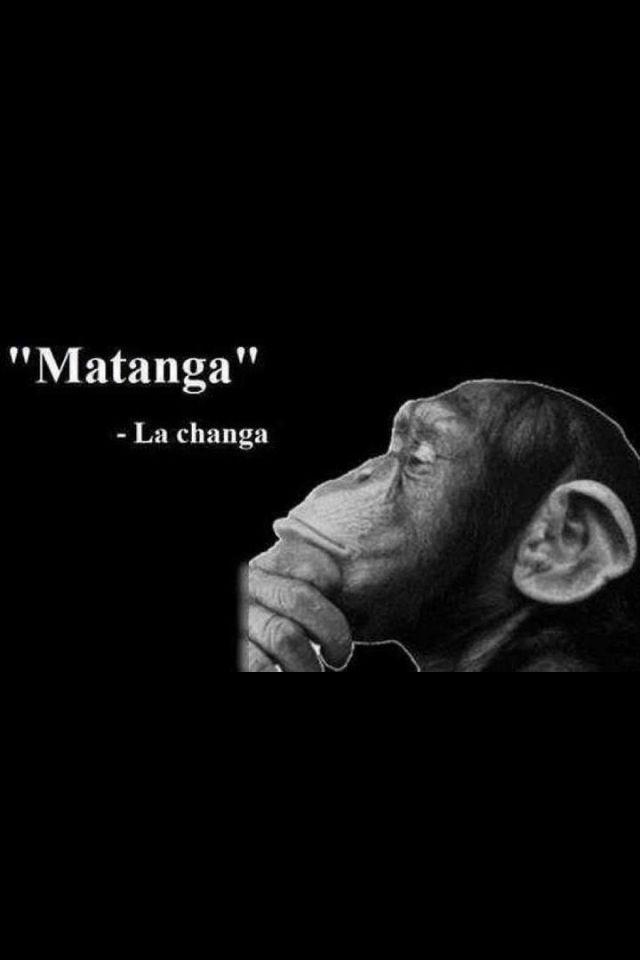 matanga-pro-avtorizaciya