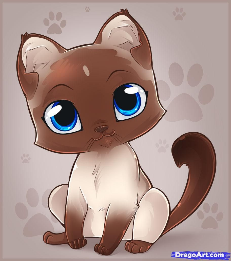How to draw an easy kitten step by step pets animals for How to draw a cartoon kitten
