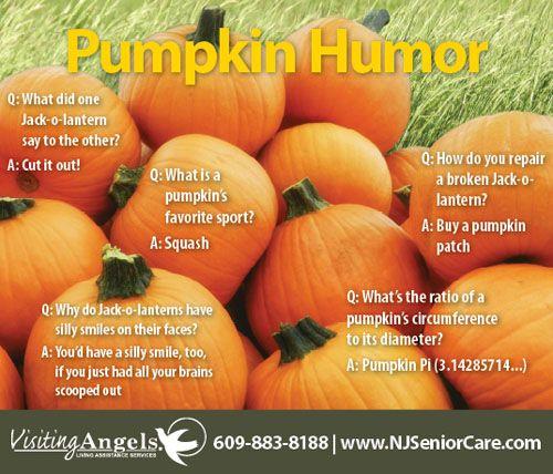 pumpkin humor wwwnjseniorcarecom pumpkin humorsenior humorhalloween humorjokespumpkins - Halloween Jokes For Seniors