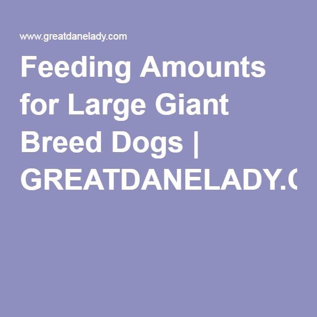 Feeding Amounts For Large Giant Breed Dogs Greatdanelady Com