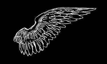 Wings overlay | Overlays | Overlays tumblr, Overlays picsart
