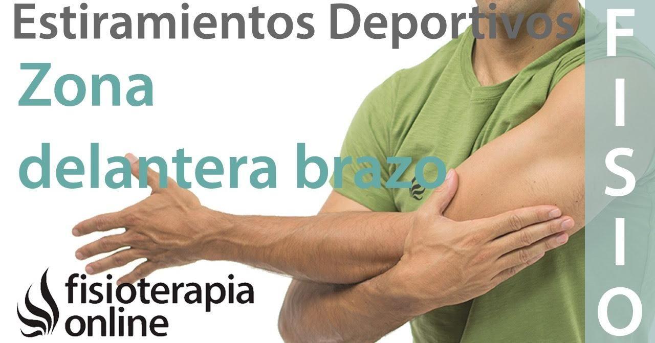Estiramientos Para Relajar El Brazo Y El Antebrazo Después De La Práctica Deportiva