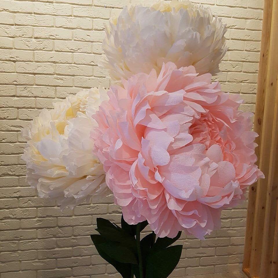 Duze Papierowe Kwiaty Gigantyczne Papierowe Kwiaty Papierowe Etsy Paper Flower Backdrop Wedding Giant Paper Flowers Large Paper Flowers
