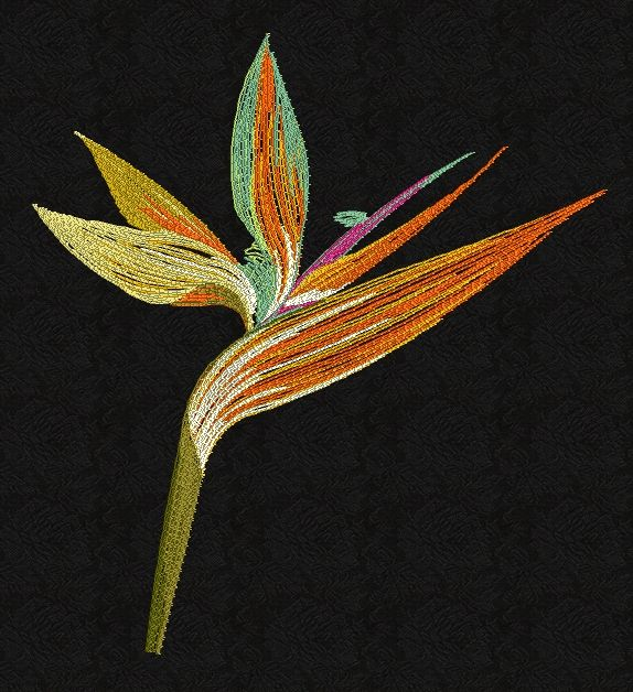 Bird Of Paradise Flower Filled Embroidery Birds Of Paradise Flower Beaded Flowers Embroidery