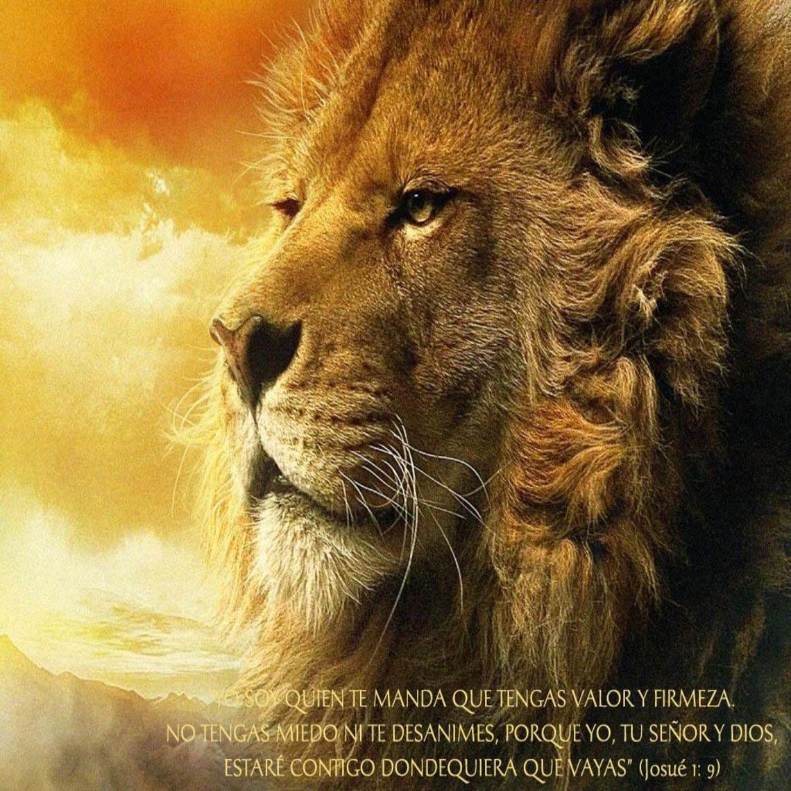 Aslan, The Chronicles of Narnia