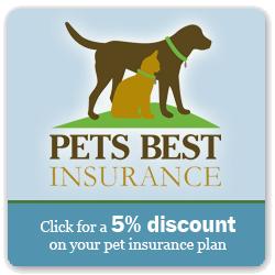 The Best Pet Insurance For Your Pet Pet Insurance Reviews Best Pet Insurance Pet Insurance Cost