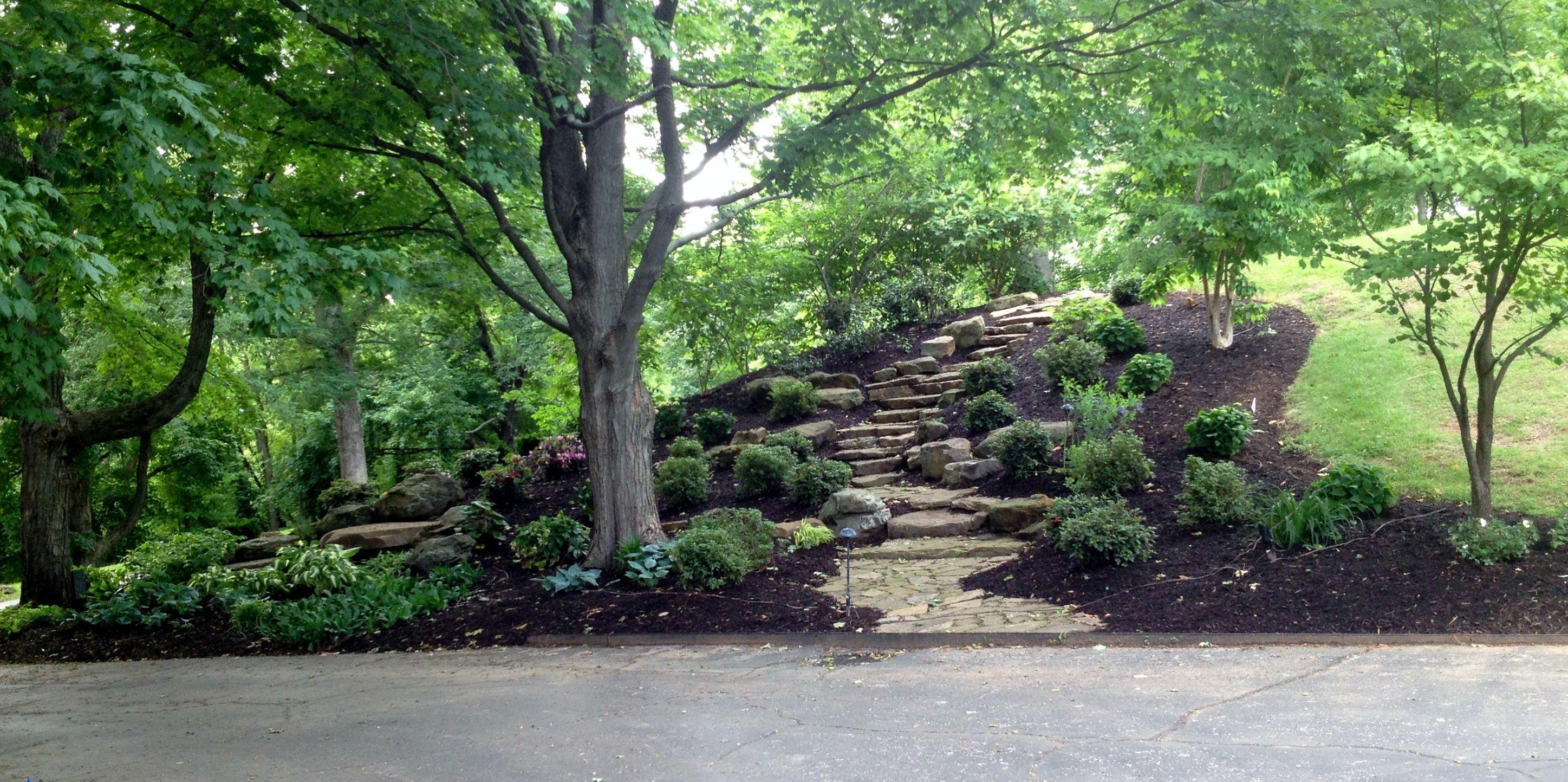 How to landscape a hillside - 17 Best Images About Gardening On Pinterest Gardens Hillside