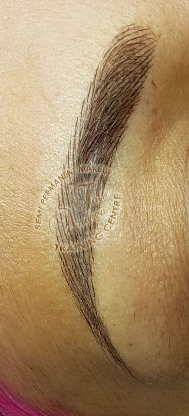 Hairstroke eyebrows permanent makeup by Andrea Toth