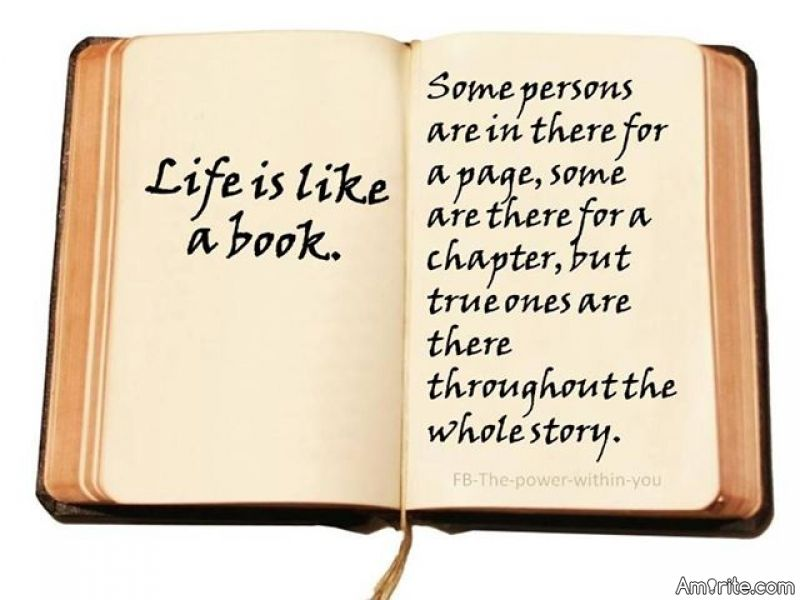 You Meet Someone For A Reason Quotes: A Reason, A Season, A Lifetime Poem