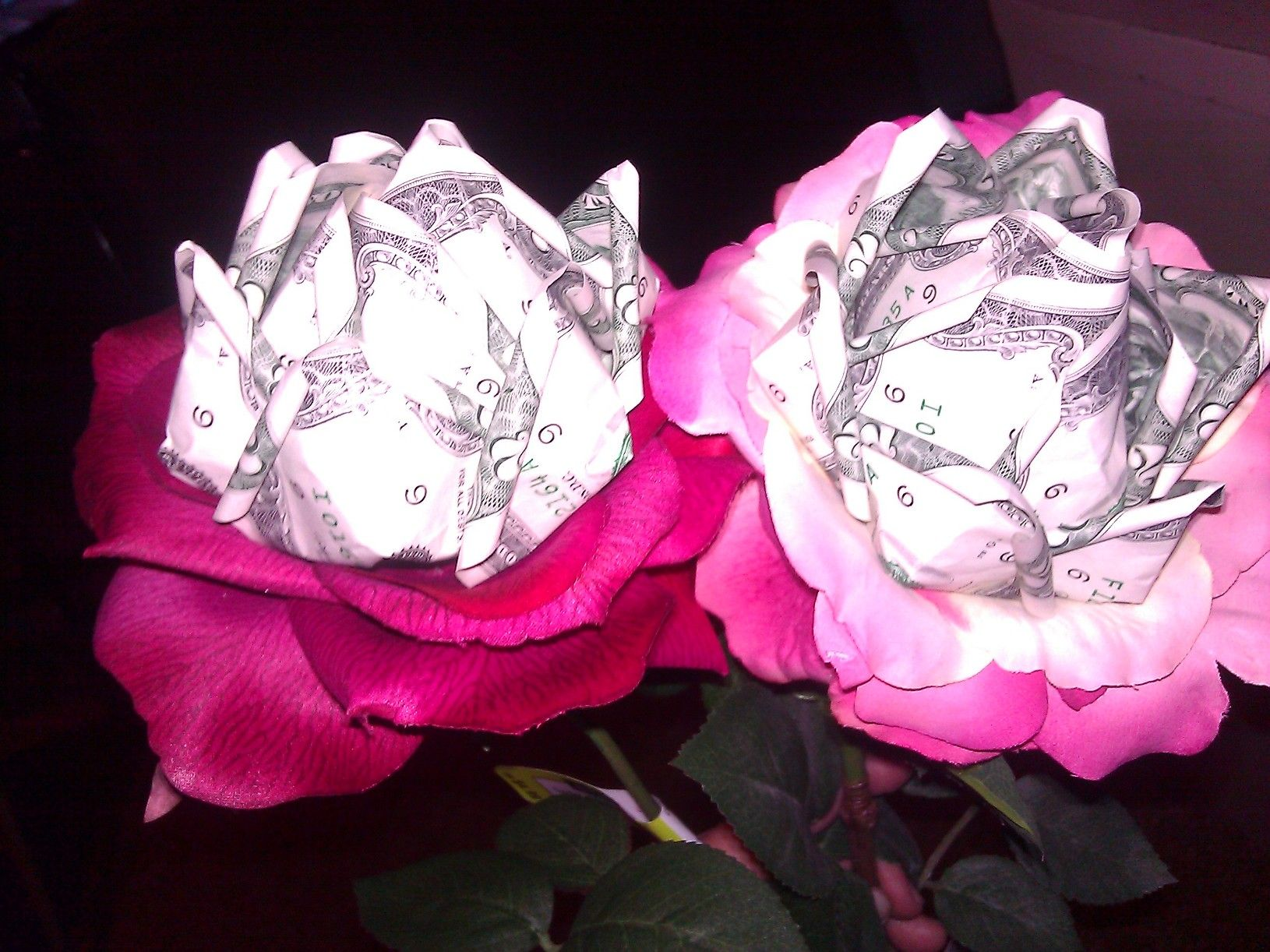 Origami money rose with two dollar bills | Origami Rose ... - photo#7