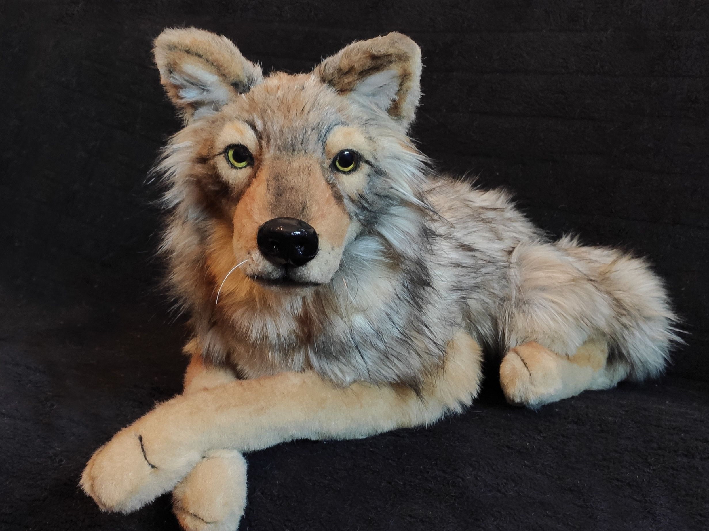 Realistic lying Wolf plush toy /Wolf art doll stuffed wild