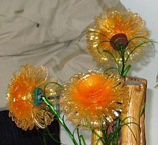 Flowers from a plastic bottle