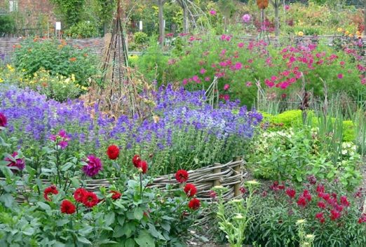 17 Best 1000 images about Cut flower Garden on Pinterest Gardens