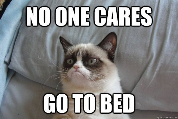 Go To Sleep Meme Funny : No one cares go to bed grumpycat grumpy cat mania lol