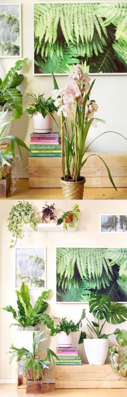 Tipps für den Anbau von Orchideen auf Bäumen 57 Ideen #growingorchids