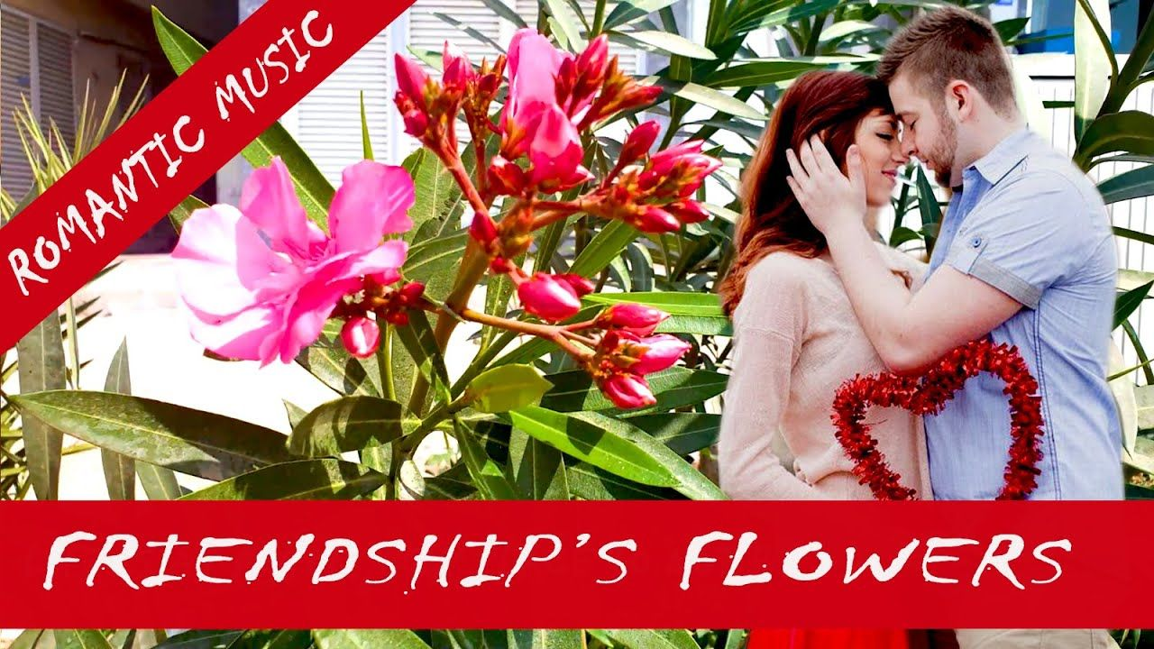 Friendship's Flowers with Romantic Music Flowers Show