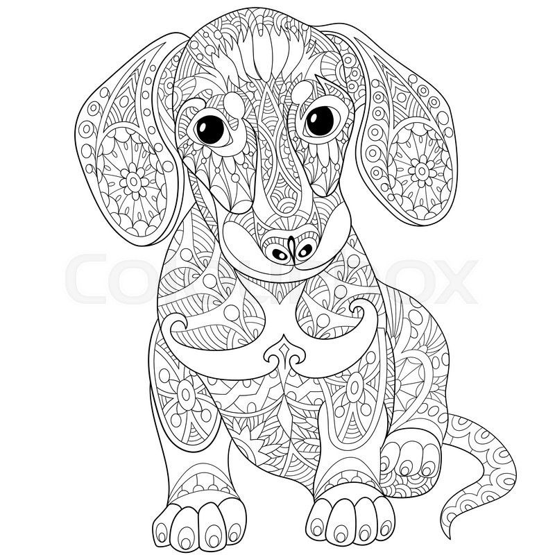 Stock Vector Of Zentangle Stylized Cartoon Dachshund Dog Isolated On White Background Hand Drawn Sk Dog Coloring Page Animal Coloring Pages Dachshund Colors