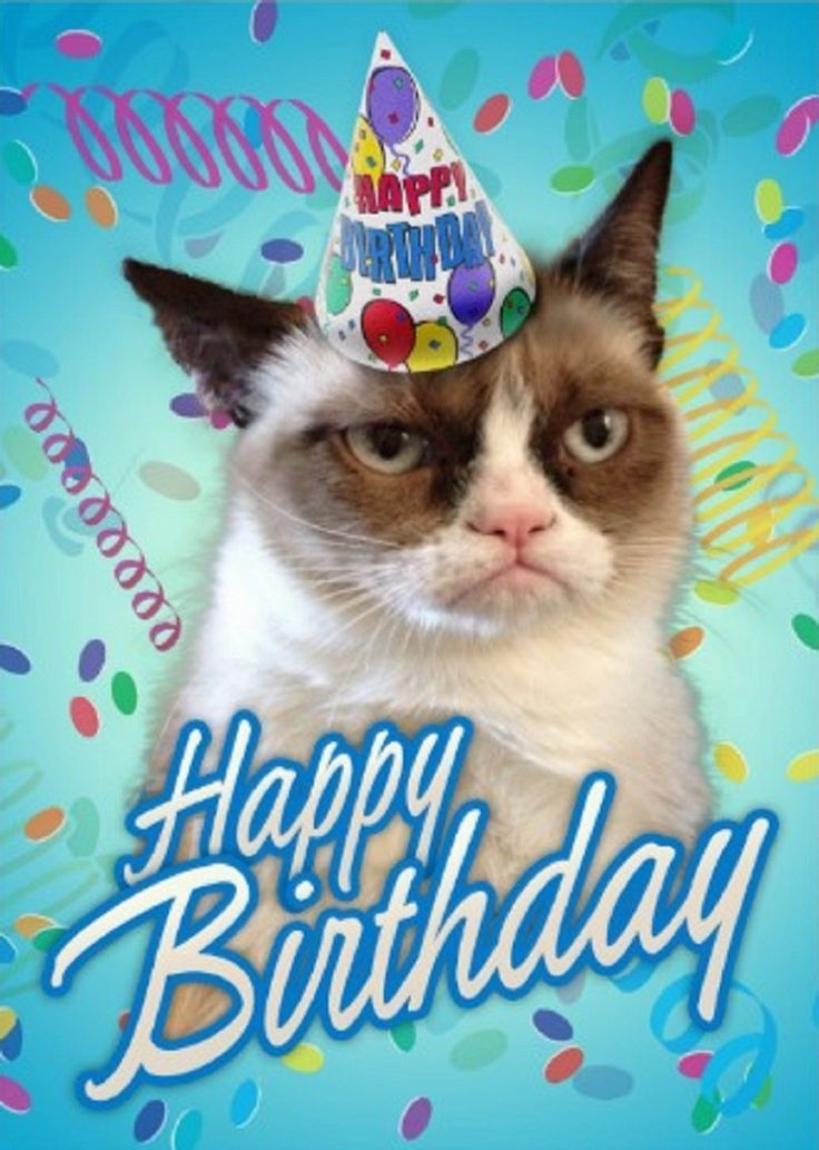 Another Birthday?! image by Jazzy Flower Cat birthday